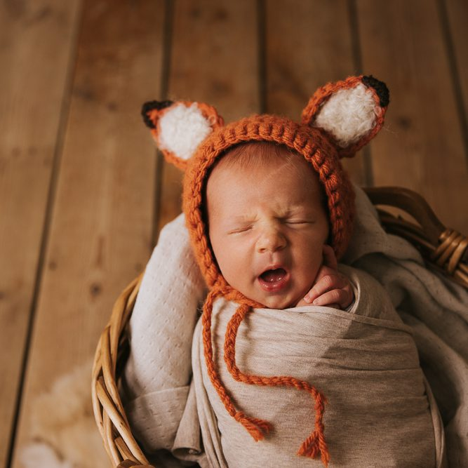 Babyfotograf Rostock Umgebung